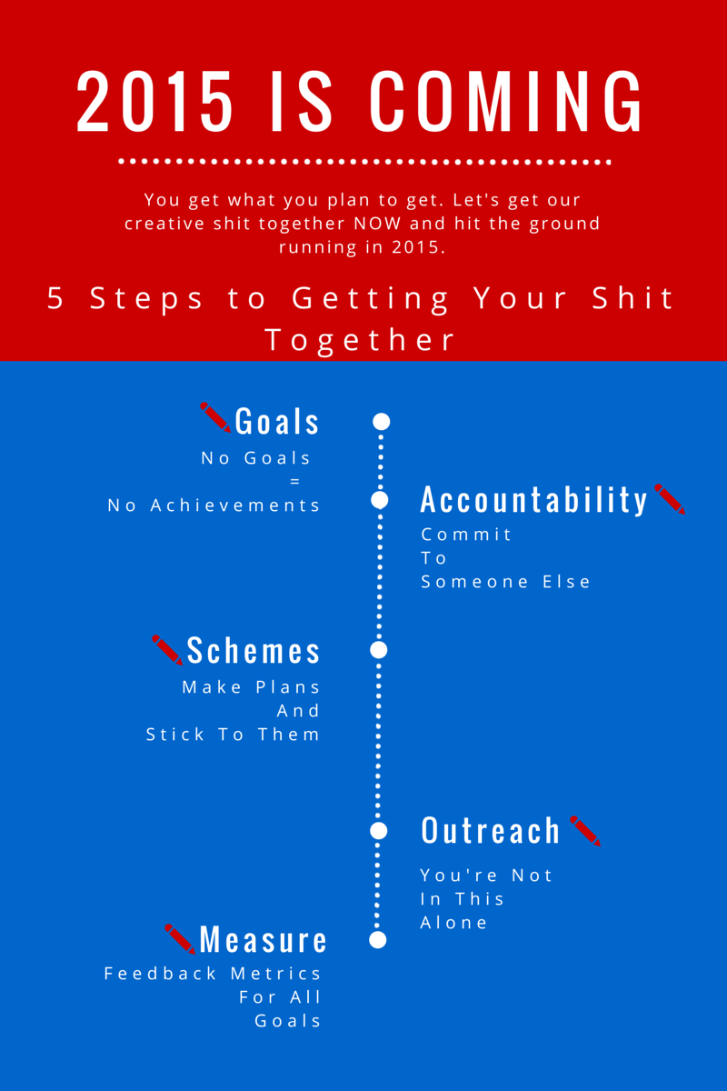 the step plan for getting your shit together in  the 5 step plan for 2015 success